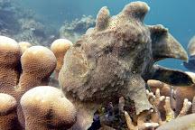 Dive Spot Asia, Boljoon, Philippines