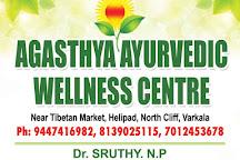 Agasthya Ayurvedic Wellness Centre, Varkala Town, India