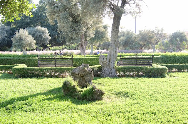 Jardin Harti