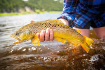Angler's West Fly Fishing, Emigrant, United States