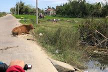 Hoi An Adventure, Hoi An, Vietnam