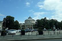 BTrip Bucharest Tours, Bucharest, Romania