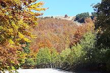 Parco Avventura Doganaccia 2000, Cutigliano, Italy