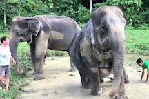 Aonang Elephant Sanctuary, Ao Nang, Thailand