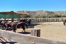 Dead Horse Ranch State Park, Cottonwood, United States