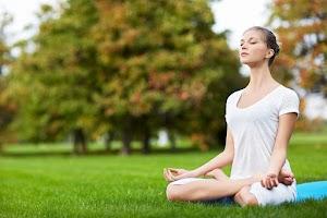 Sukhveda - Ayurvedic Wellness Center