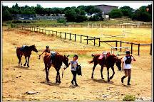 Centre Equestre De Mejannes Le Clap, Mejannes-le-Clap, France