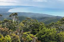 Hump Ridge Track, Tuatapere, New Zealand