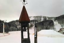 Sapporo Kokusai Ski Resort, Sapporo, Japan