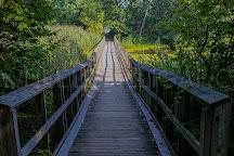 Wheatley Provincial Park, Wheatley, Canada
