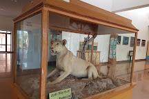 Rajiv Gandhi Regional Museum of Natural History, Sawai Madhopur, India