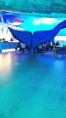 Airport Direct reykjavik iceland
