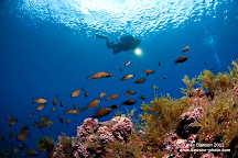 Big Blue Diving, Magaluf, Spain