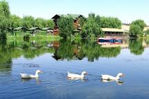Celal Bayar Park, Kirikkale, Turkey