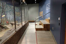 Delmarva Discovery Center, Pocomoke City, United States