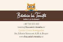 Bacania lui Tomita, Brasov, Romania