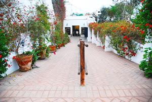 Kuna Museo Larco 8