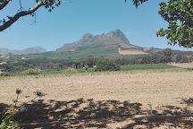 Yonder Hill Wine Estate, Stellenbosch, South Africa