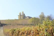 Castello della Volta, Barolo, Italy