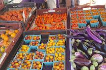 Boulder County Farmers' Market - Saturday Longmont Market, Longmont, United States