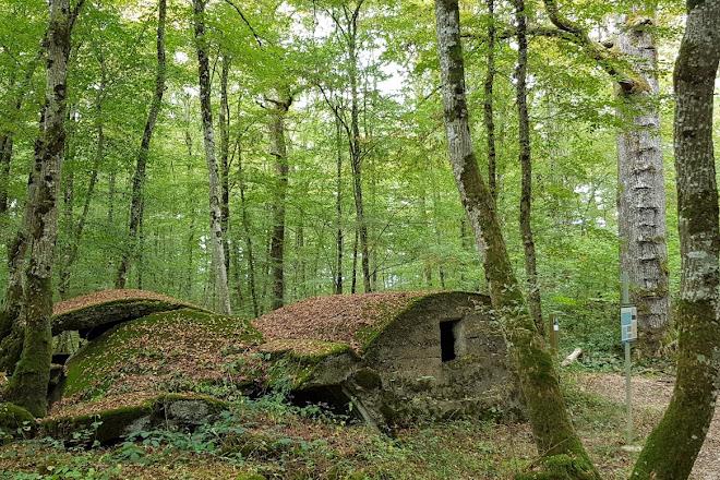 Site du Canon d'Hermeville, Verdun, France