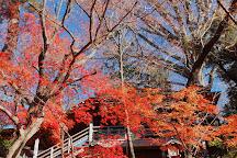 Todoroki Fudoson, Setagaya, Japan