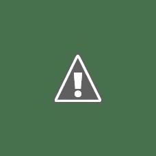 The EggFree Cake Box Bow