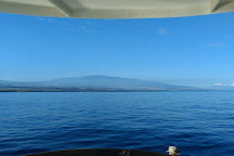 Waikoloa Coast Divers, Waikoloa, United States