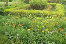Botanical Gardens of the Indian Republic, Noida, India