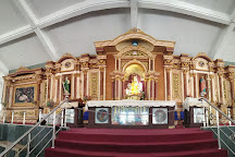 Morning Star Church for Our Lady of Vailankanni, Velankanni, India