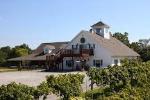 Stoney Ridge Winery, Bryan, United States