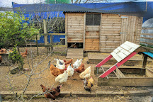 Stepney City Farm, London, United Kingdom
