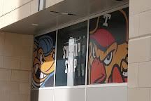 Huntington Center, Toledo, United States