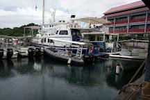 Fish 'n Fins Palau, Koror, Palau