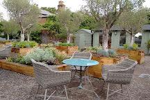 Medicine Garden, Cobham, United Kingdom