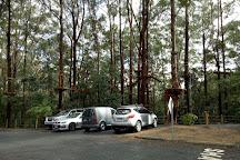 TreeTops Coffs Harbour, Coffs Harbour, Australia