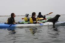 Namibia Kayak Tours, Walvis Bay, Namibia