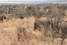 Pilanesberg National Park, Sun City, South Africa