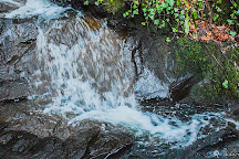 Gortletteragh Waterfalls, Stranorlar, Ireland