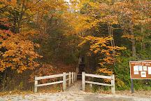 Petoskey State Park, Petoskey, United States