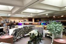 Midland Center for the Arts, Midland, United States