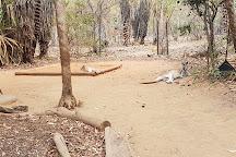 Territory Wildlife Park, Berry Springs, Australia