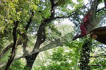 Pitchoun Forest, Villeneuve-Loubet, France