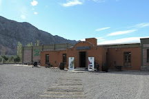 Campo de Olivos SRL, San Juan, Argentina