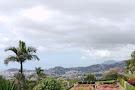 Botanická zahrada Madeira
