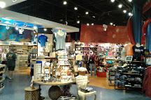 Shedd Aquarium, Chicago, United States