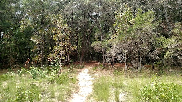 Garden of Eden Trail