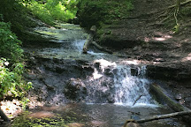 Parfrey's Glen State Natural Area, Baraboo, United States