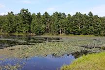 Pulaski State Park and Recreational Area, Chepachet, United States