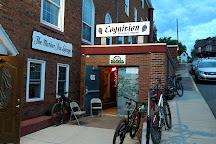 Cognition Brewing Company, Ishpeming, United States